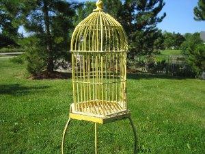 birdcage-full
